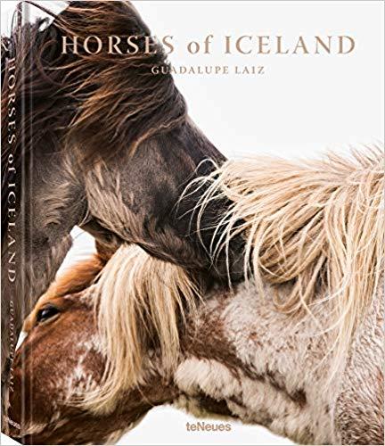 LIVRO-HORSE-OF-ICELAND