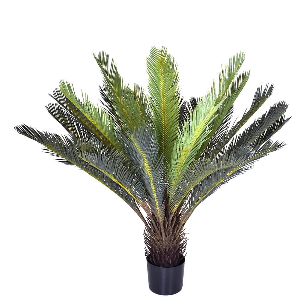 Palmeira Cicus Com Pote Verde
