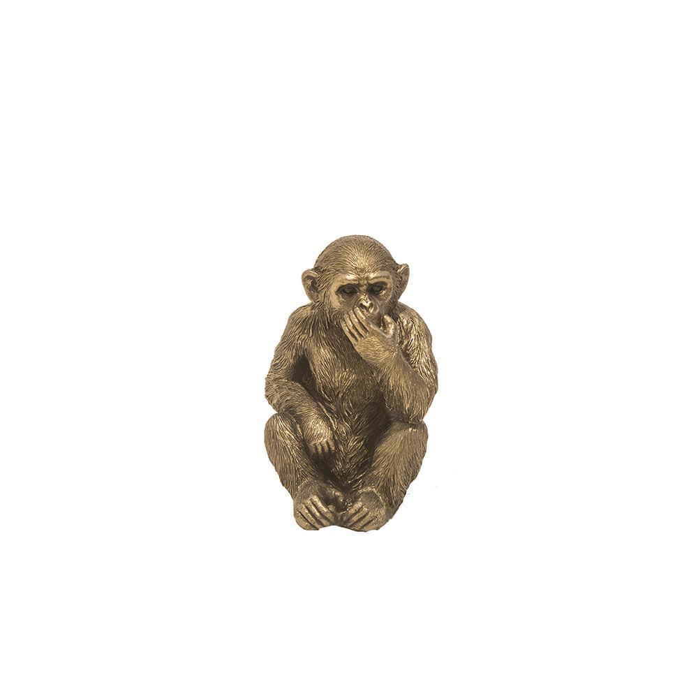 escultura-macaco-mudo